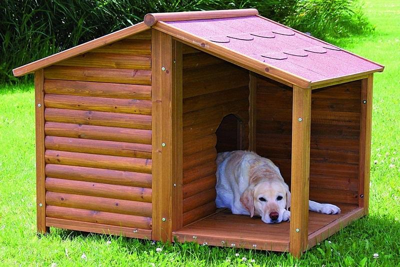 fb76b7093846 Woofland - Σπιτάκι σκύλου - Άνθρωπος και σκύλος