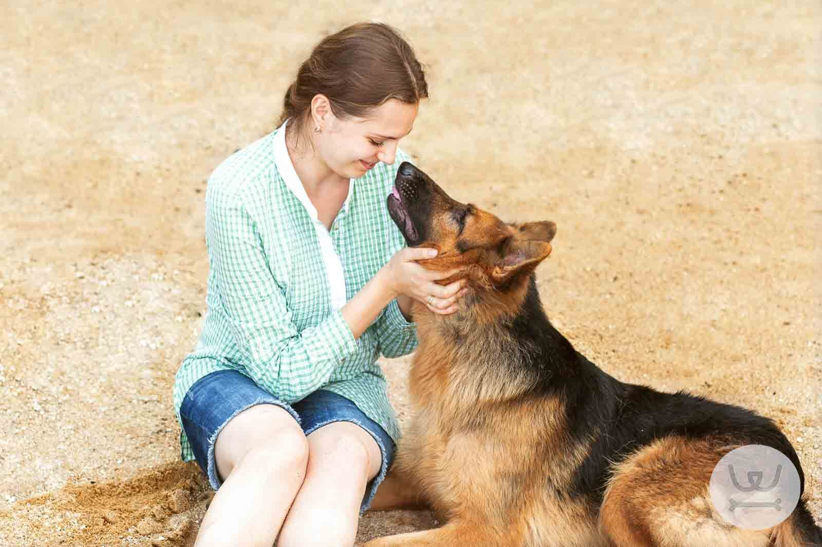 Woofland - Έρευνα κατανοώντας την σχέση με τον σκύλο μας