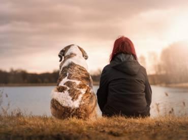 Πόσο χρόνο χρειάζεται ο σκύλος να δεθεί με τον κηδεμόνα του