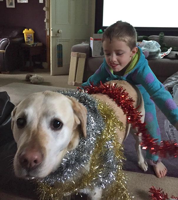 Woofland - Αστείες φωτογραφίες σκύλων που έμειναν μόνοι με παιδιά - Γουφαμάρες 6