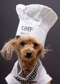 Woofland - Αστείες φωτογραφίες σκύλων που μαγειρεύουν - Γουφαμάρες 4