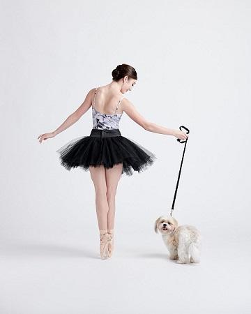 Woofland - Αστείες φωτογραφίες σκύλων που χορεύουν - Γουφαμάρες 3