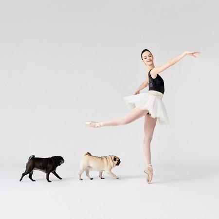 Woofland - Αστείες φωτογραφίες σκύλων που χορεύουν - Γουφαμάρες 5