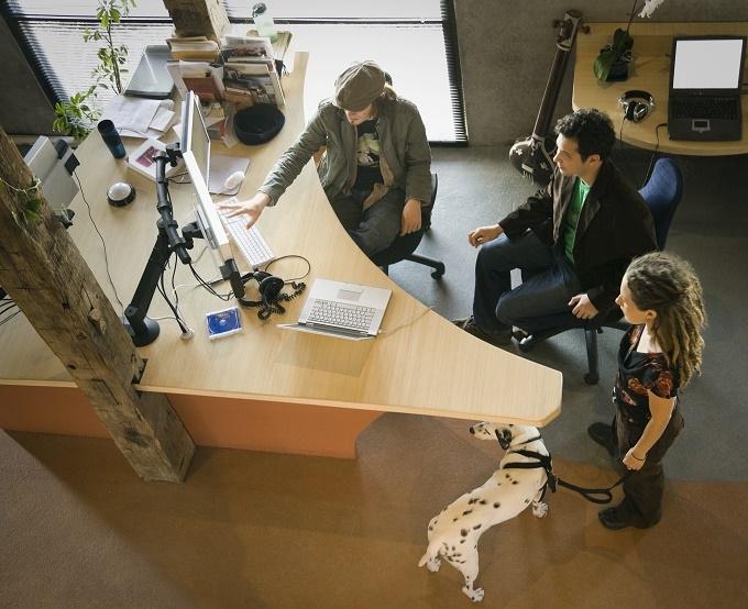 Woofland - Αστείες φωτογραφίες σκύλων στο γραφείο - Γουφαμάρες 7