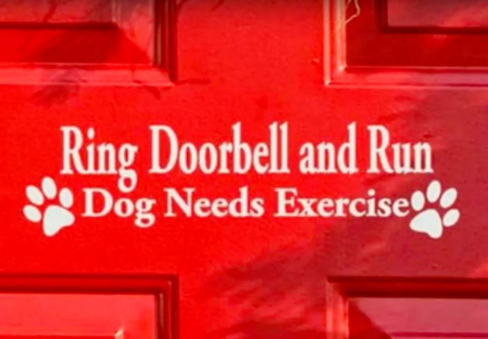 Προσοχή Σκύλος Αστείες φωτογραφίες σκύλων Γουφαμάρες
