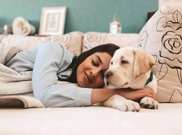 Βοηθά ο σκύλος τις γυναίκες να κοιμούνται καλύτερα -Woofland