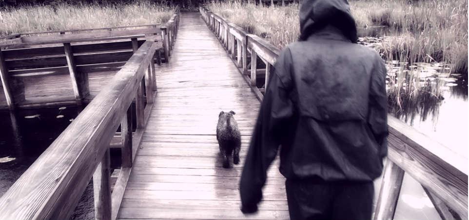 Woofland - Γουφαμέρες - Αστείες φωτογραφίες σκύλων στη βροχή 7