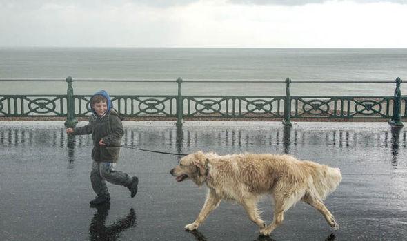 Woofland - Γουφαμέρες - Αστείες φωτογραφίες σκύλων στη βροχή 9
