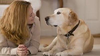 Woofland - Εσείς μιλάτε στο σκύλο σας - Επιστήμη και ενημέρωση