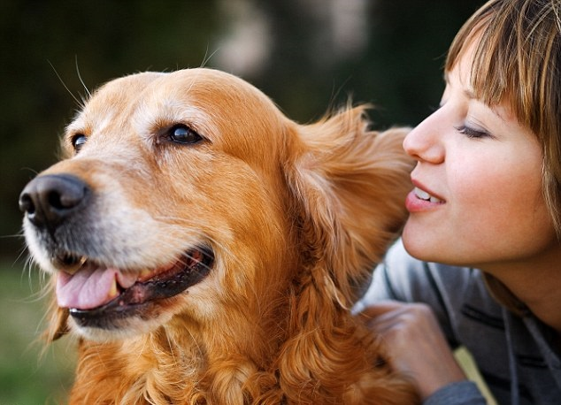 Εσείς μιλάτε στο σκύλο σας – Επιστήμη και ενημέρωση Woofland