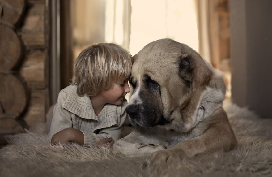 Woofland Να πάρω σκύλο (στο παιδί μου); Άνθρωπoς και σκύλος