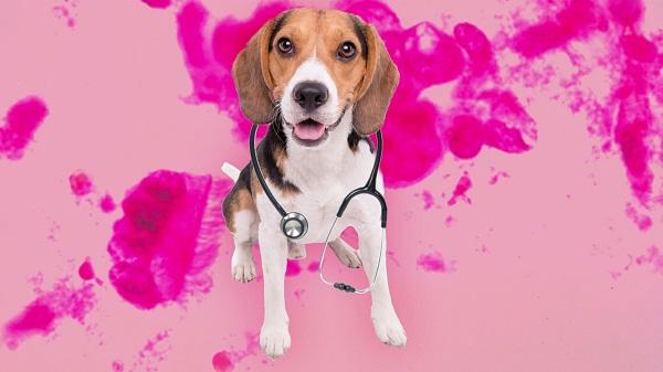 Woofland - Σκύλοι ανιχνεύουν τον καρκίνο του πνεύμονα - Επιστήμη και ενημέρωση