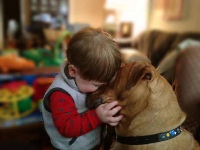 Woofland - Σκύλος και παιδιά - Αστείες φωτογραφίες - Γουφαμάρες 1