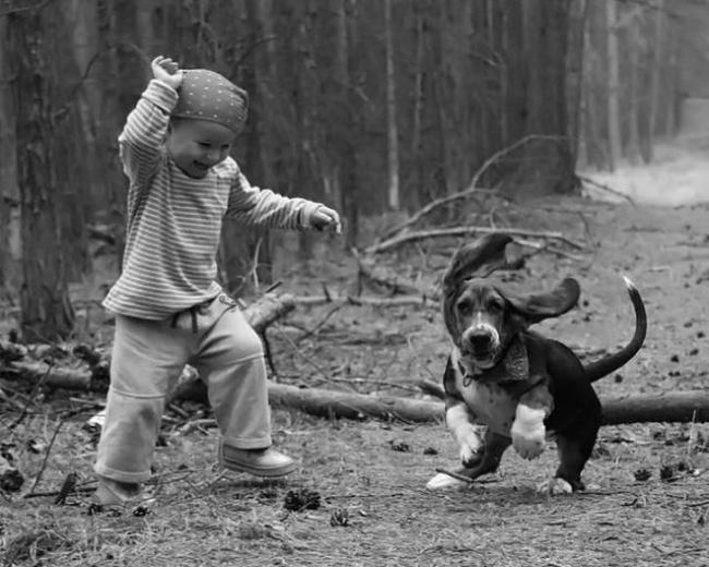 Woofland - Σκύλος και παιδιά - Αστείες φωτογραφίες - Γουφαμάρες 3