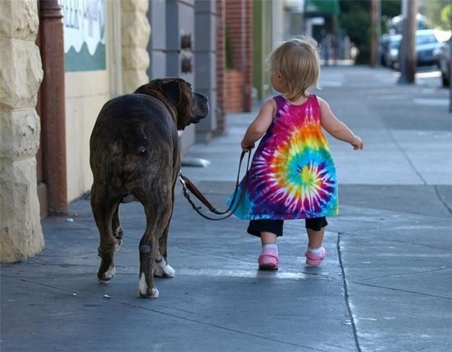 Woofland - Σκύλος και παιδιά - Αστείες φωτογραφίες - Γουφαμάρες 4