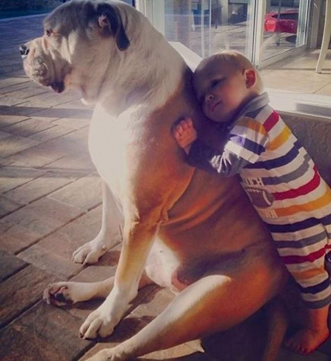 Woofland - Σκύλος και παιδιά - Αστείες φωτογραφίες - Γουφαμάρες 8