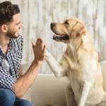 Woofland - Σκύλος & επιθετικότητα - Δεν φταίει η φυλή αλλά ο κηδεμόνας - Επιστήμη και ενημέρωση