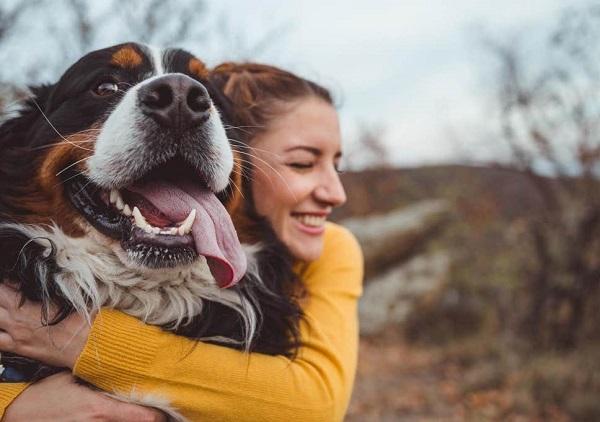 Woofland - Σκύλος επιθετικότητα Δεν φταίει η φυλή αλλά ο κηδεμόνας - Επιστήμη και ενημέρωση