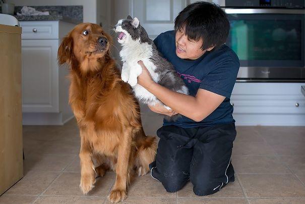 Woofland - Τι φοβάται ο σκύλος μου - Αστείες φωτογραφίες σκύλων - Γουφαμάρες 9