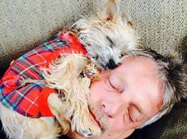 Γουφαμάρες – 15 Μπαμπάδες που δεν ήθελαν σκύλο