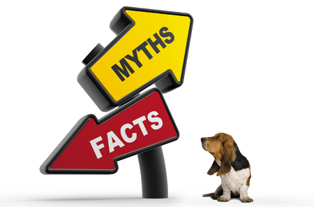 Woofland - 5 μύθοι για τους σκύλους - Επιστήμη και ενημέρωση 1