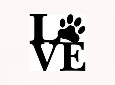 Be my valentine dog – Αστείες φωτογραφίες σκύλων – Woofland