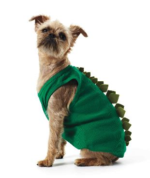Woofland - DIY Αποκριάτικες στολές για σκύλους Άνθρωπος και σκύλος 2