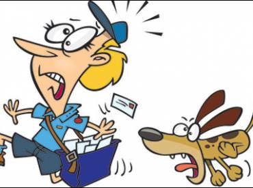 Γιατί ο σκύλος μου μισεί τον ταχυδρόμο – Woofland