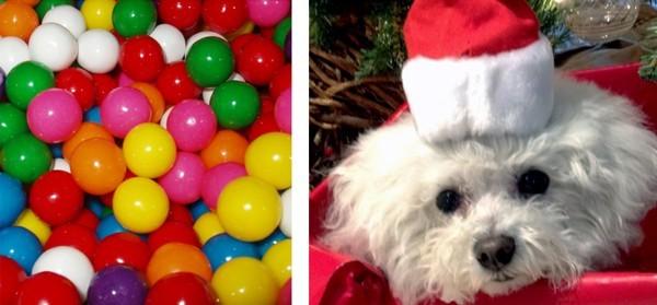 Woofland - Χριστουγεννιάτικοι κίνδυνοι