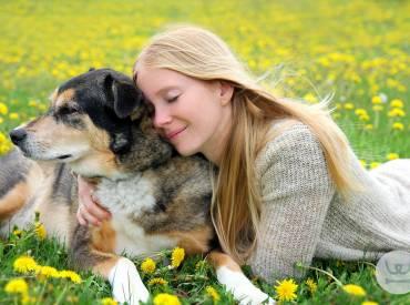 Νιώθουν οι σκύλοι την χαρά μας – Επιστήμη και ενημέρωση