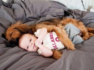 11+1 φωτογραφίες από σκύλους και παιδιά που κοιμούνται μαζί